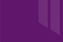 Виолетта глянец