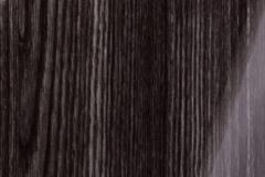 Р306 Вяз черный металлик Глянец