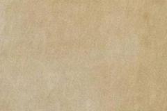 Р674 Земляной латте Глянец