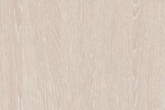 Дуб-Атланта-поры-дерева-натуральный-шпон