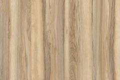 Ясень-Оринако-Светлый-поры-дерева