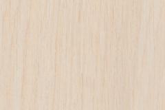 Белый-дуб
